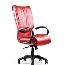 Neutral Posture Embrace Chair