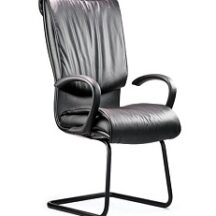 Neutral Posture Embrace Guest Chair
