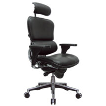 Eurotech Ergohuman Leather Chair