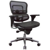 Eurotech Ergohuman Mesh Chair