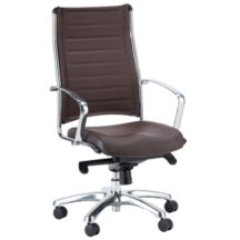 Eurotech Europa Leather Chair