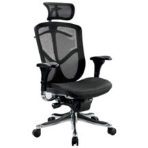 Eurotech Fuzion Luxury Chair