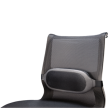 Fellowes I-Spire Series Lumbar Cushion