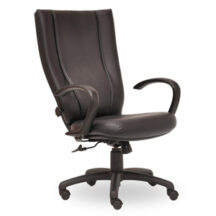 Seating Inc Monterey II Swivel 300 Chair