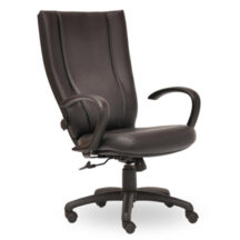 Seating Inc Monterey II Swivel 400 Chair