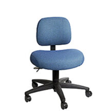Soma Ergonomic SomaComfort Chair