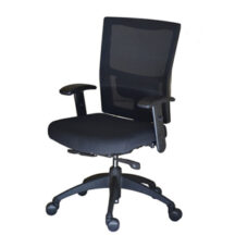Soma Ergonomic SomaStandard More Chair
