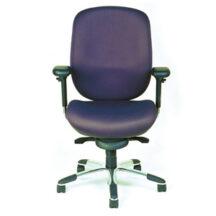 Soma Ergonomic SomaStandard Storm Chair