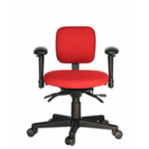 Soma Ergonomic SomaSupport N Chair