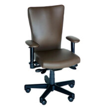 Soma Ergonomic SomaVenture Chair