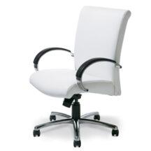 Highmark Camber Best Chair