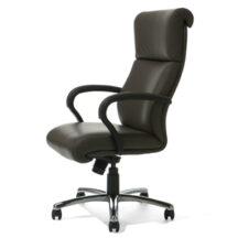 Highmark Wave Best Chair