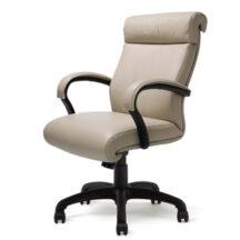 Highmark Wave Better Chair