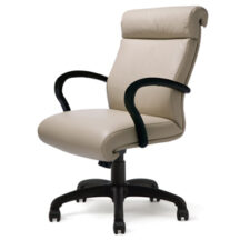 Highmark Wave Good Chair