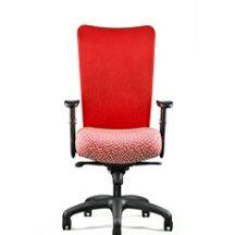 Neutral Posture U4ia Chair