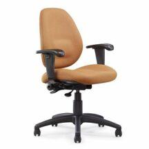 Allseating Chiroform Midback Chair
