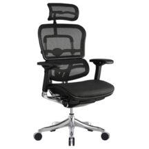 Eurotech Ergo Elite Chair