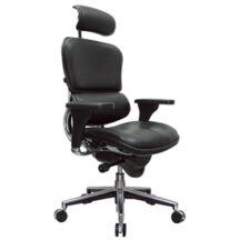 Eurotech Ergohuman Leather Chair
