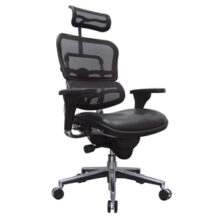 Eurotech Ergohuman Leather Seat and Mesh Back Chair