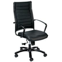 Eurotech Europa Metallic Chair