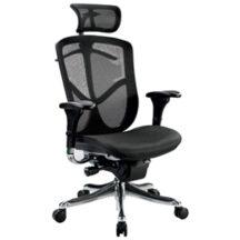 Eurotech Fuzion Luxury Chair