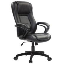 Eurotech Pembroke Chair