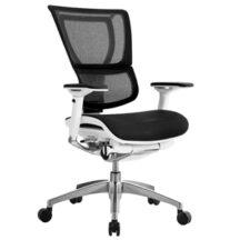 Eurotech iOO Chair