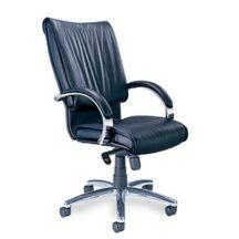 Mayline President Chair