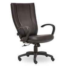 Seating Inc Monterey II Swivel 300 Chair